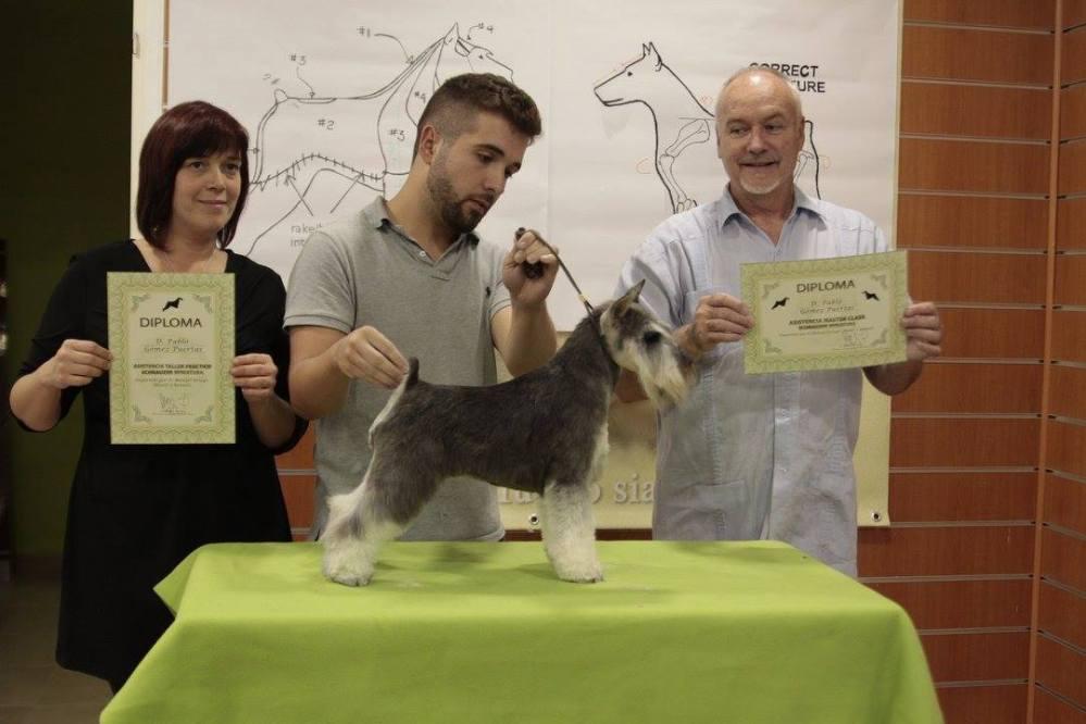curso peluqueria canina gratis