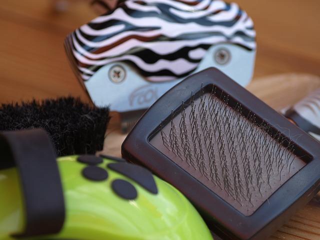 peluqueria canina en casa en madrid